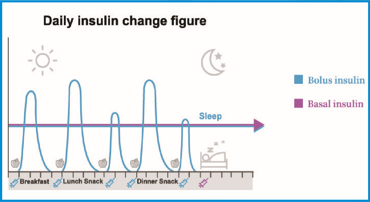 Daily Insulin Delivery image